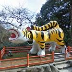 Shigisan Big Tiger