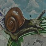 Slug Graffiti