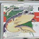 U-Haul #98 - Washington