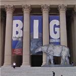 'Big Exhibit' at the National Archives