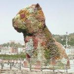 'Puppy' by Jeff Koons