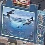 Wyland Whale Mural (sort of)