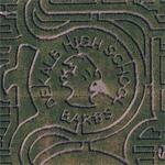 DeKalb High School corn maze