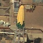 Corn water tower