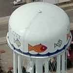 Fish water tower